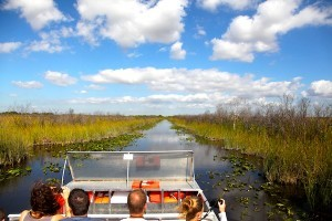 Airboat ride on the Everglades national park