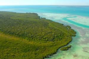 Aerial view of Biscayne / Photo taken by National Park Service
