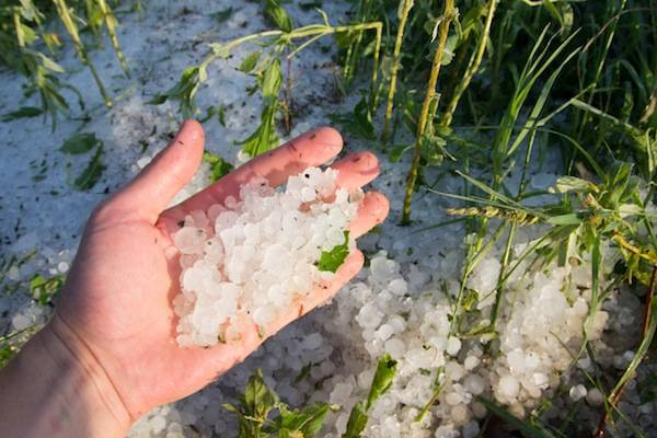 Hail or hailstone facts