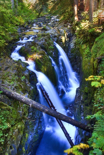 Olympic National Park Facts and information