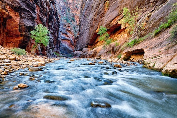 Zion National Park Information