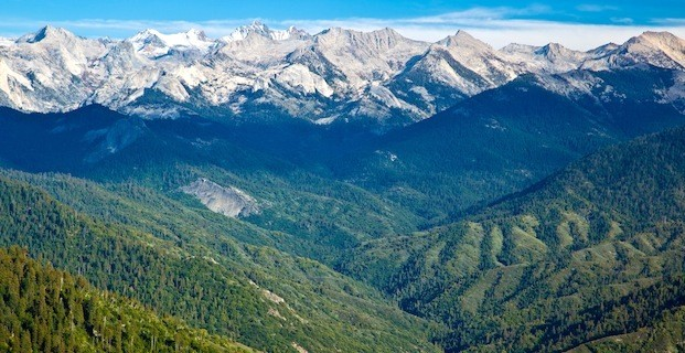 Sequoia National Park picture