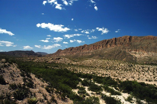 Big Bend National Park Information
