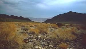 An arid landscape / Photo taken by Roger469
