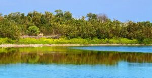 Everglades National Park picture