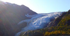 Kenai Exit glacier