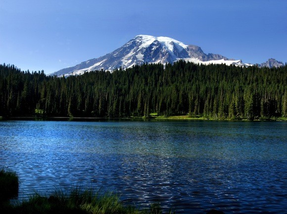 Mount Rainier national park information