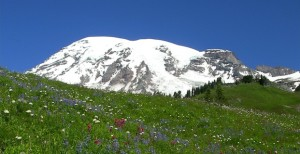 Mount Rainier National park Facts