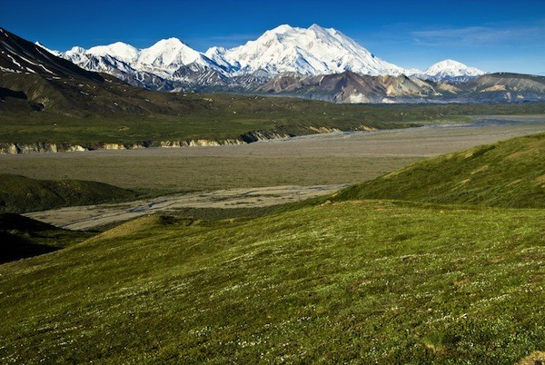 Denali National Park Information