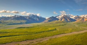 Denali national park picture