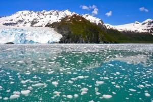 Aialik glacier, Kenai Fjords NP, Alaska