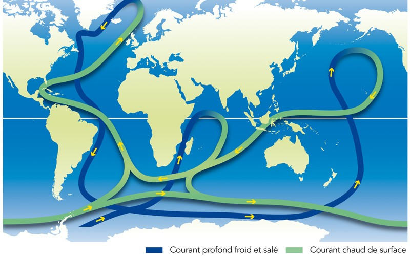 Types of ocean currents.