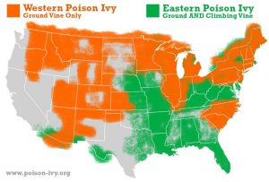 poison ivy map